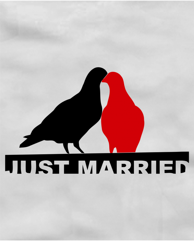 Just married birds