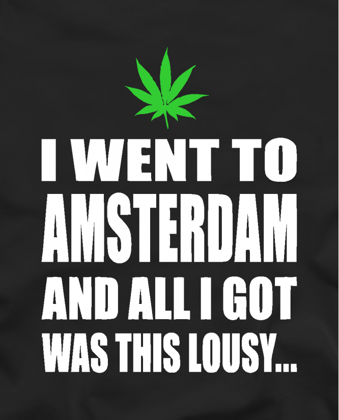I went to Amsterdam